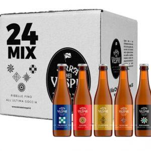 birra artigianale casse mix 24